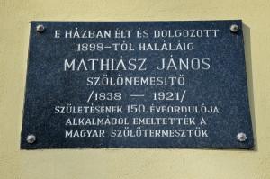 20130228_MathiászJ175-Kecskemét-fotóBirinyiJDSC_0078
